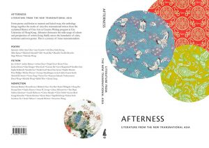 afterness literature from the new transnational asia